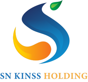 Logo Kinss low res